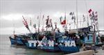 Thanh Hóa quản lý việc ra khơi của tàu thuyền đảm bảo an toàn về người, tài sản