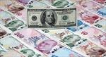 Theo chân Nga, Thổ Nhĩ Kỳ bán tháo trái phiếu chính phủ Mỹ
