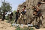 Afghanistan tiêu diệt 2 thủ lĩnh cấp cao Taliban