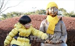 Tổng thống Hàn Quốc: Vấn đề 'phụ nữ mua vui' không thể giải quyết bằng ngoại giao