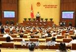 Triển khai Chương trình giám sát của Quốc hội năm 2019