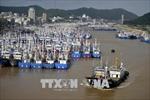 Nhiều người thiệt mạng do lũ lụt tại Trung Quốc - Cảnh báo nắng nóng kéo dài ở Nhật Bản