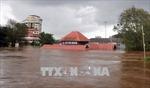 Ấn Độ đẩy mạnh chiến dịch cứu trợ, cứu nạn tại bang Kerala