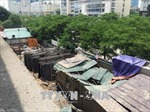 Cẩu tháp đứt cáp rơi sập nhà, một số người bị thương