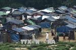 Mỹ phong tỏa tài sản 4 chỉ huy và 2 đơn vị quân đội Myanmar