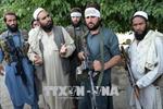Thủ lĩnh Taliban muốn đàm phán trực tiếp với Mỹ