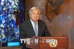 'Không có chỉ thị mật nào của Liên hợp quốc về Syria'
