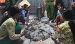 Quy định về kiểm tra tạp chất trong tôm và sản phẩm tôm