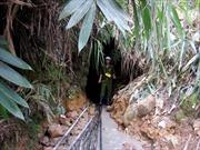 Sập hầm khai thác vàng, 1 người thiệt mạng
