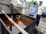 Trung Quốc biến 'dầu ăn bẩn' thành nhiên liệu sạch
