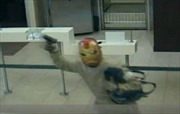 Đeo mặt nạ Iron Man đi cướp ngân hàng