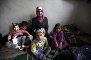 Canada tiếp nhận 1.300 người tị nạn Syria