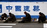 Trung Quốc theo dõi người di cư bằng chỉ số... rau cải