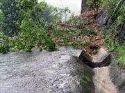 Quảng Ngãi tập trung khắc phục hậu quả mưa bão