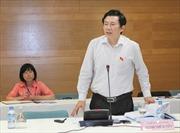 Quốc hội thảo luận dự án Luật Phá sản và Luật Đầu tư công