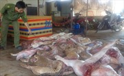Thu 6 tạ thịt lợn thối, bệnh tại Đồng Nai