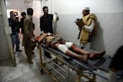 Chính phủ Pakistan và Taliban tiếp tục đàm phán 'trong bạo lực'