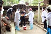 Nhiều người dân nhập viện do nghi nhiễm cúm A/H5N1