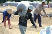 Mỹ công nhận 'gạo nàng thơm Chợ Đào' và 'thanh long Châu Thành'