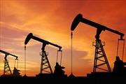 Nga phát hiện mỏ dầu lớn nhất trong 20 năm