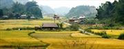 Kỷ niệm 60 năm Chiến thắng Điện Biên Phủ: Tự hào thăm lại Điện Biên