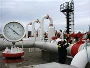 Nga sẵn sàng đàm phán về khí đốt với Ukraine