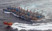 Tàu cá Trung Quốc tràn sang biển Hàn Quốc đánh bắt trái phép