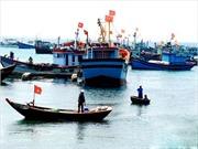 Hỗ trợ ngư dân Lý Sơn - Quảng Ngãi an tâm bám biển