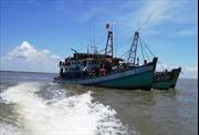 Sản lượng thủy sản khai thác biển ở Bạc Liêu tăng