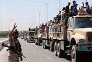TNS Graham: Mỹ cần liên minh với Iran để bình ổn Iraq