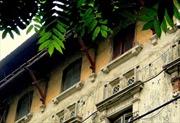 Hà Nội tăng cường quản lý cải tạo biệt thự cũ