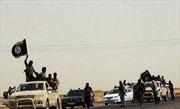 Phiến quân Syria yêu cầu viện trợ chống ISIL