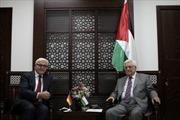 Palestine kêu gọi Israel và Hamas ngừng bắn