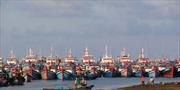 Tăng cường hỗ trợ ngư dân bám biển