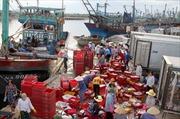 Tiếp sức ngư dân - Kỳ 2: Cú hích cho nghề cá