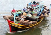 Tổ đội đoàn kết, chỗ dựa của ngư dân