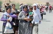 Mỹ khẩn cấp tìm cách giải vây cho người Iraq