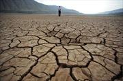 Trung Quốc 'thấm' hậu quả biến đổi khí hậu