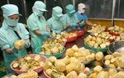 Việt Nam trước cơ hội lớn xuất khẩu nông sản sang Nga