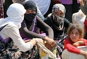 IS bắt cóc hàng chục dân làng ở miền Bắc Iraq