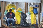 Liên minh châu Phi họp khẩn đối phó dịch Ebola
