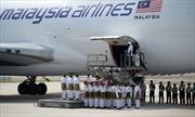 Máy bay MH17 bị nhiều vật thể tốc độ cao đâm thủng