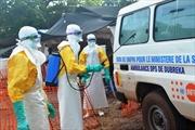 Đội tuyên truyền về Ebola bị tấn công, 7 người chết