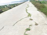 Đê biển bị nứt do nâng cấp ngược quy trình kỹ thuật