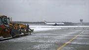 Nga điều tra vụ tai nạn máy bay làm CEO của Total thiệt mạng