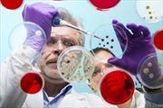 Dụng cụ phát hiện virus Ebola trong vòng 15 phút