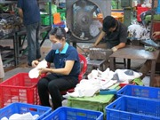 Phát triển công nghiệp phụ trợ để thu hút đầu tư nước ngoài