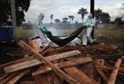 Gần 7000 người tử vong do Ebola