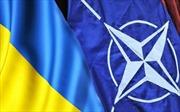 Ukraine phải mất thời gian dài để gia nhập NATO
