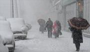 Moskva tê liệt trong bão tuyết